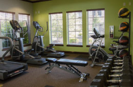 Fitness Center at Canyon Club at Perry Crossing apartments in Plainfield IN
